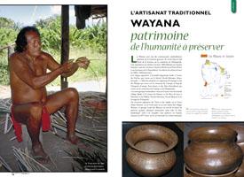 L'artisanat traditionnel wayana : Un patrimoine de l'humanité à préserver