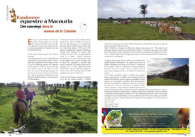 Randonnée équestre à Macouria : Des cow-boys dans la savane de la Césarée