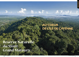 Mont Grand Matoury Nature Reserve : At the heart of Cayenne island