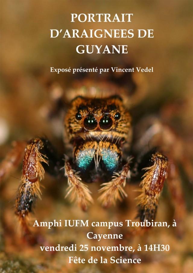 Conférence : Portrait d'araignées de Guyane