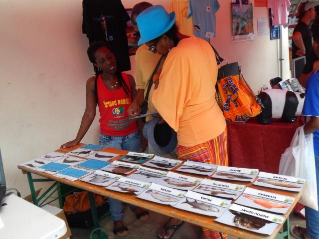 quizz poissons et cÇtacÇs de Guyane avec le Conseil GÇnÇral