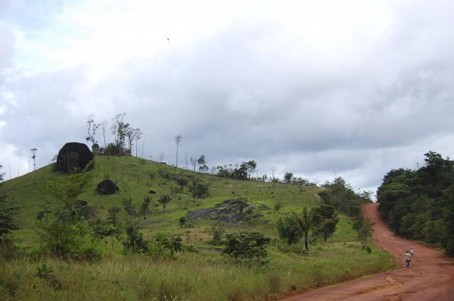 En Amapá, : le déboisement pratiquement inexistant