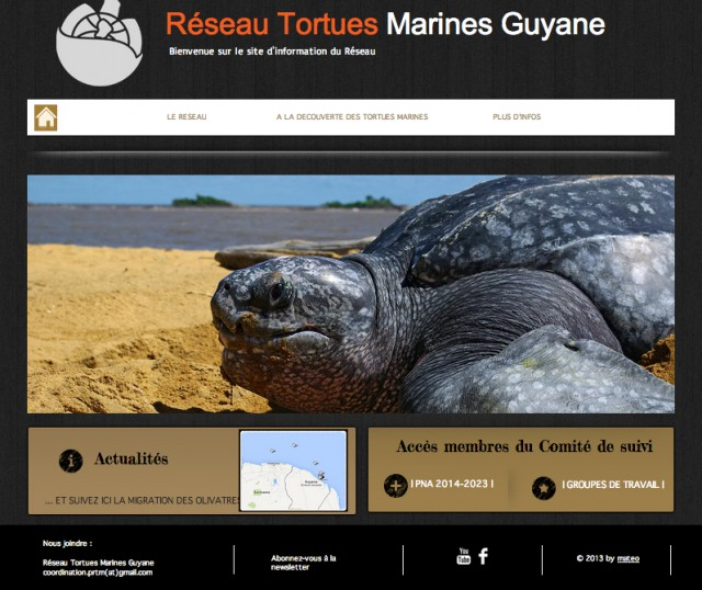 site tortues