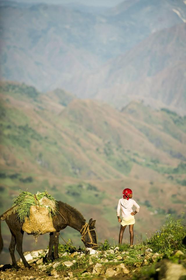 L'UE et la FAO intensifient la lutte :contre la désertification dans les Caraïbes