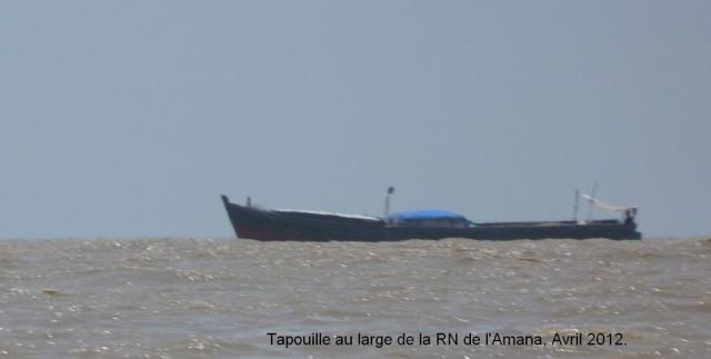 Les eaux territoriales de Guyane : haut-lieu de la pêche illégale.