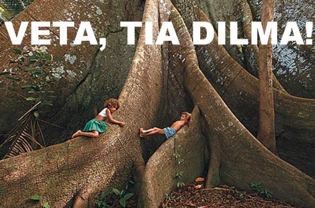 VETA DILMA : Vendredi prochain, la présidente du Brésil Dilma devrait se positionner par rapport au Code Forestier