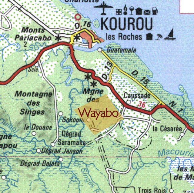 wayabo2
