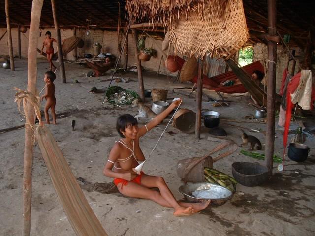 RORAIMA : Orpaillage, charge de députés contre le gouvernement